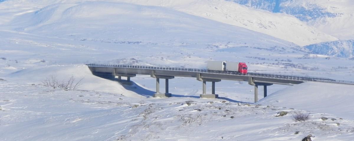 scandinavian Transport do Skandynawii – czym może zaskoczyć nas jeszcze 2015 r.?